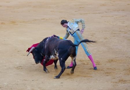 PUERTO SANTA MARIA, SPAIN - SEPTEMBER 02: The bullfighter Juan Cortes fights in the Plaza del Puerto. September 2, 2012 in Puerto Santa Maria, Spain  Editorial