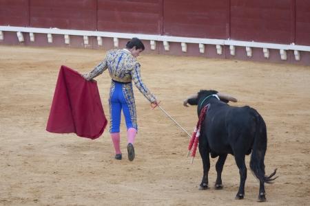 torero: PUERTO DE SANTA MARIA, ESPA? - 02 de septiembre: El torero Paco Hidalgo lucha en la Plaza del Puerto. 02 de septiembre 2012 en El Puerto de Santa Mar? Espa?