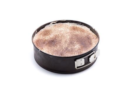 tiramisu cake, check with sponge cake, mascarpone cheese and cinnamon Stock Photo - 18514951