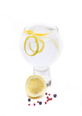 a gin and tonic, one of the most famous cocktales based gin Stock Photo