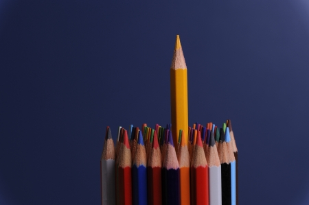 many colored pencils on white background photo