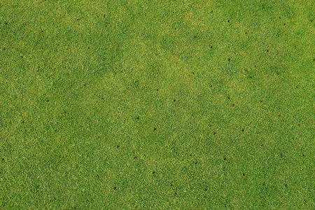 Putting green on golf course maintenance Aerated background Stock Photo