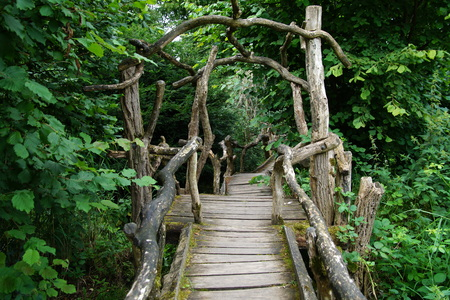 woodland  horror: Creepy footbridge in to a forest
