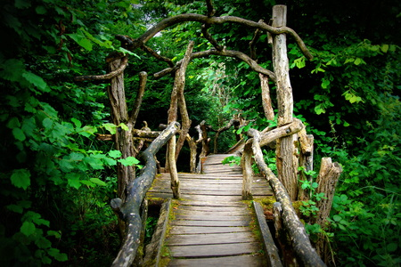 Mysterious footbridge in to a forest Stock Photo
