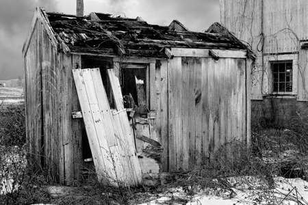 weathered: old weathered wooden shack