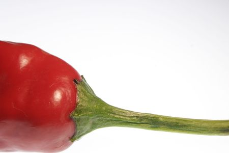 Chili pepper Stock Photo - 2377848