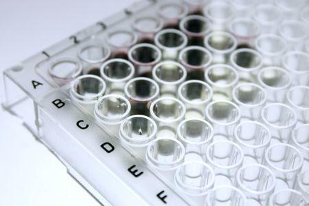 antigen: 96 well microtiter plate