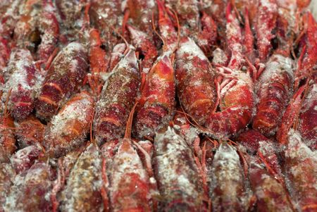 Close up view of rows of grozen crawfish