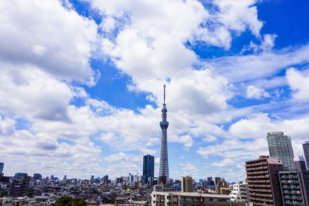 atmosfera: cielo azul y cielo de Tokio árbol Foto de archivo
