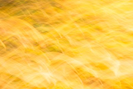 autumn colour: Move blurred fall autumn leaves in warm sunset temperature with orange colour