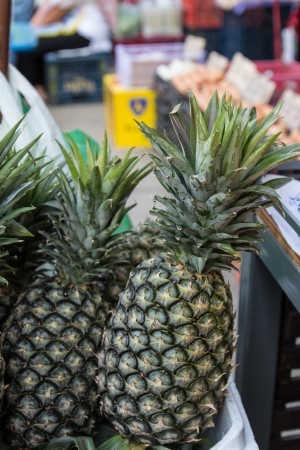 Pineapple type of Thai fruit photo