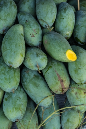 Green mango one type of fruit in Thailand photo