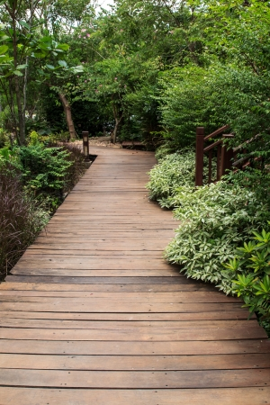 Walk way bridge in the garden during day time photo