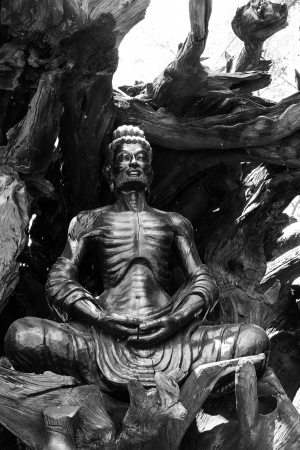 woodcutting buddha photo