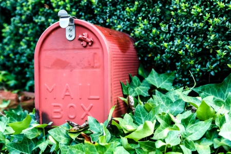 Mail box or post box with the green tree Standard-Bild