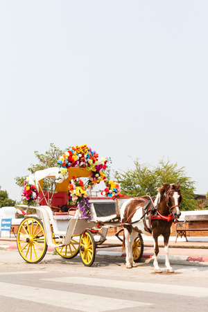 horse and carriage: Horse carriage at Phrathat Lampang Luang temple in Lampang, Thailand