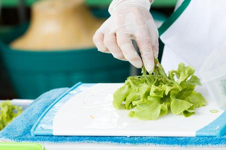 leaf vegetable: Hand prepare raw organic leaf  vegetable