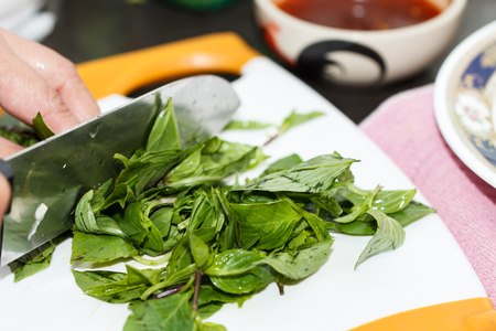 Spinach herb prepare for cooking omelet with in olive oil Stock Photo