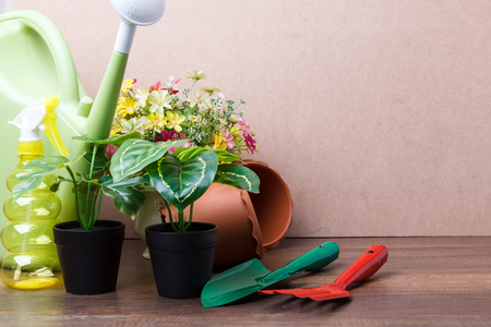 Top view of gardening tools and flowers on wooden background Stock Photo