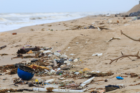 Garbage on the beach Indicates dirty and ineffective waste management