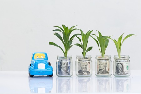 Money growing plant step with deposit bill in bank concept