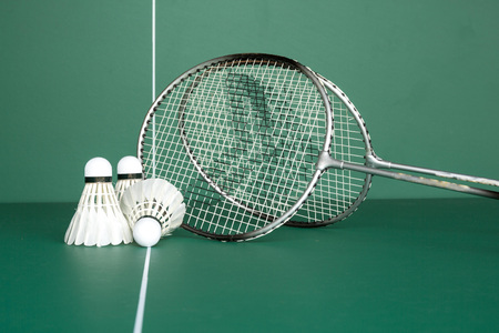 BADMINTON and twin Shuttlecock