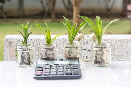 money in jar glass growing as plant business concept Stock Photo