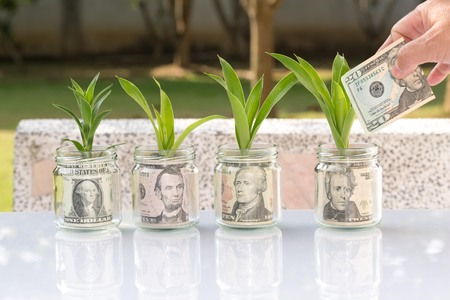 money in jar glass growing as plant business concept Standard-Bild