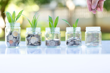 Save money with stack money coin for growing as plant your business concept