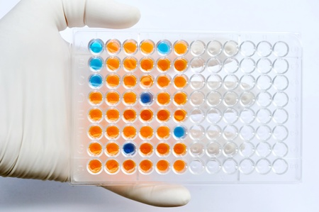 96 wells plate for ELISA, Immunology testing method