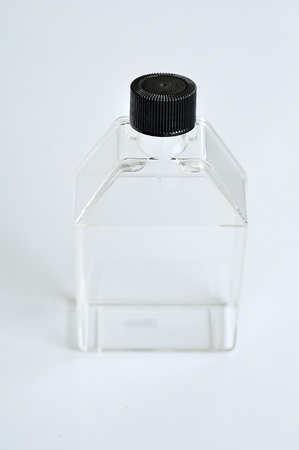 Tissue culture flask photo