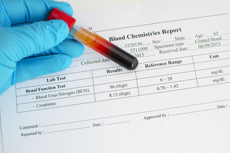 renal: Renal function test result: Abnormal high