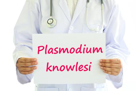 plasmodium: Plasmodium knowlesi