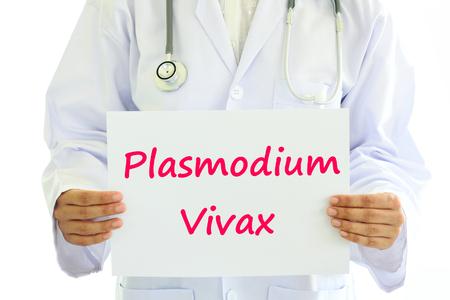 plasmodium: Plasmodium vivax Stock Photo