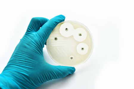 Antimicrobial susceptibility testing in petri dish