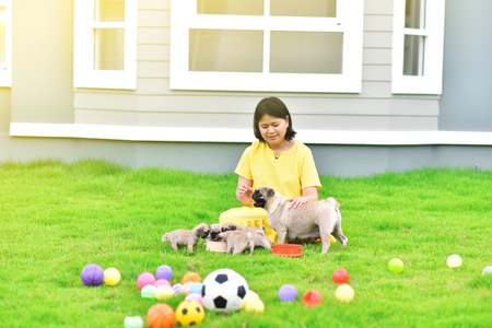 Happy Asian female playing with Pug family in garden