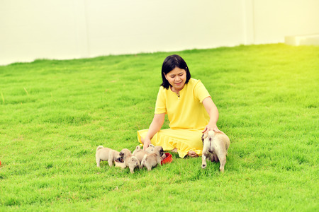 Happy Asian female playing with puppies Pug in garden