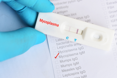 Mycoplama positive test result by using rapid test cassette Stock Photo
