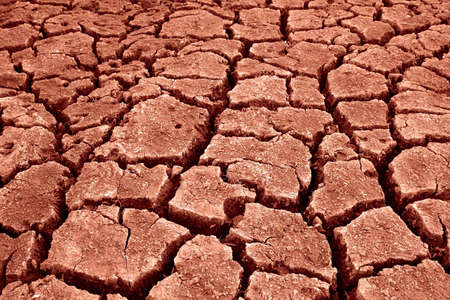 Red scorched earth with cracks Stock Photo - 1990807