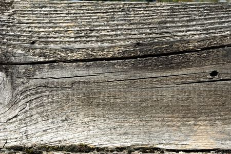 Structure of plank Stock Photo - 5407232