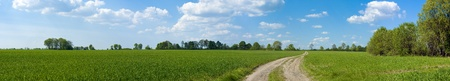 Panorama of green fields photo