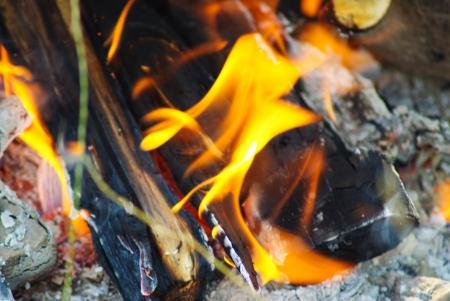 smolder: firewood burning in fire