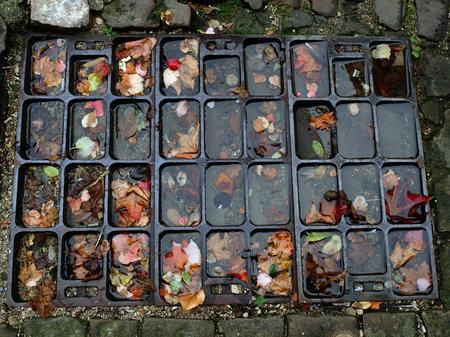manhole: manhole cover