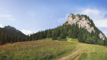 mala fatra: Maly Rozsutec Mountain in Mala Fatra National Park, Slovakia