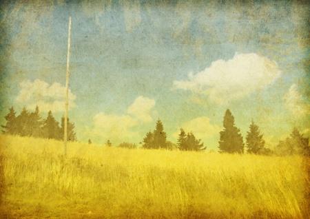 Old grunge illustration with nature on background