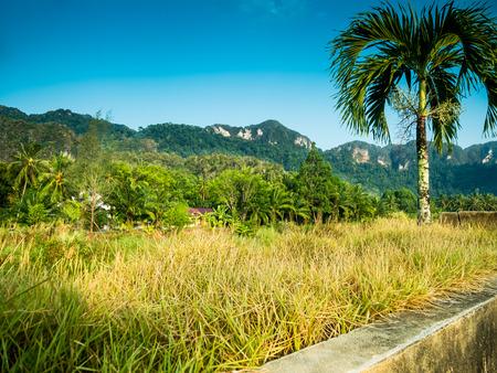 phangnga: Meuang Phangnga Province
