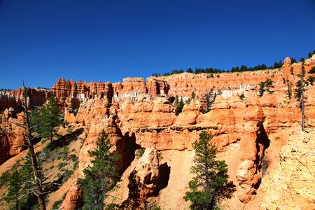 Hoodoo Wall in Bryce Canyon National Park