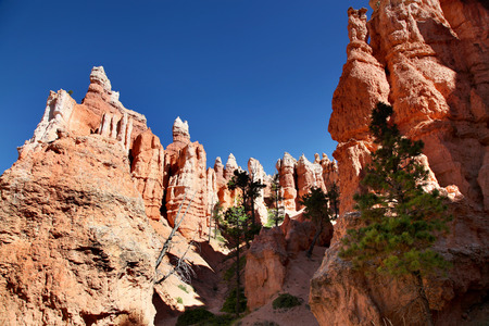 Hoodoo spires in Bryce Canyon National Park