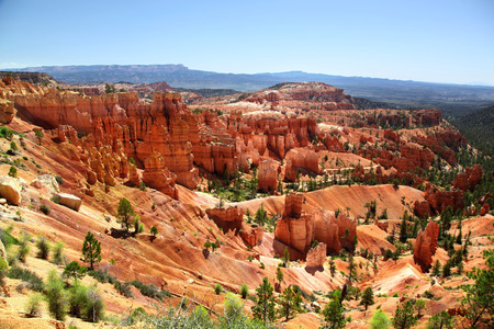 View of the red hoodoos and trees of Bryce Canyon National Park