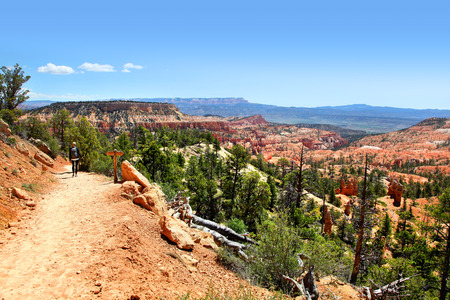 View of Bryce Canyon Landscape from Tower Bridge Trail